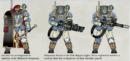StormTroopers13thGreatCrusade