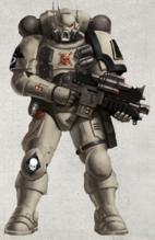 Tome Keepers Vanguard Marine