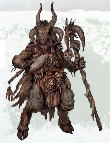 Брай-шаманы