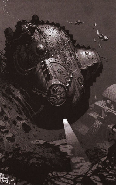Dwarf Nautilus