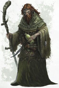 Hedge Wizard.jpg