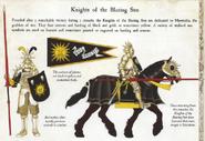 Knights of the Blazing Sun Uniforms-01