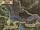 Grootscher Marsh