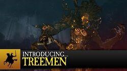 Total_War_WARHAMMER_-_Introducing..._Treemen