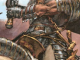 Order of the Hammer of Sigmar
