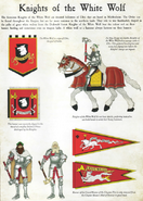 Knights-Of-The-White-Wolf