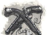 Gunpowder Weapons