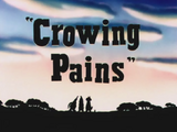 Crowing Pains