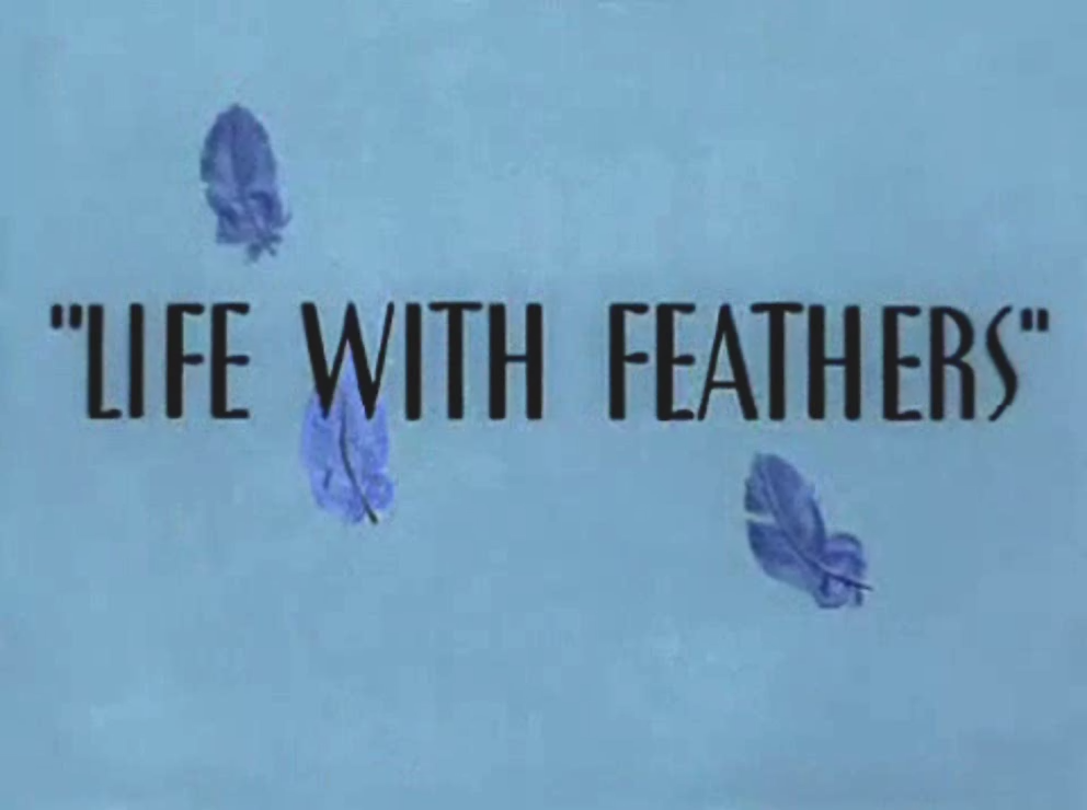 Life with Feathers
