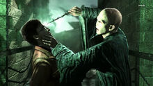 Voldemort (Deathly Hallows Part 2 Game).jpg