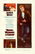 Rebel Without a Cause (1955 poster)