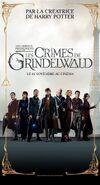 Fantastic beasts the crimes of grindelwald ver22 xlg