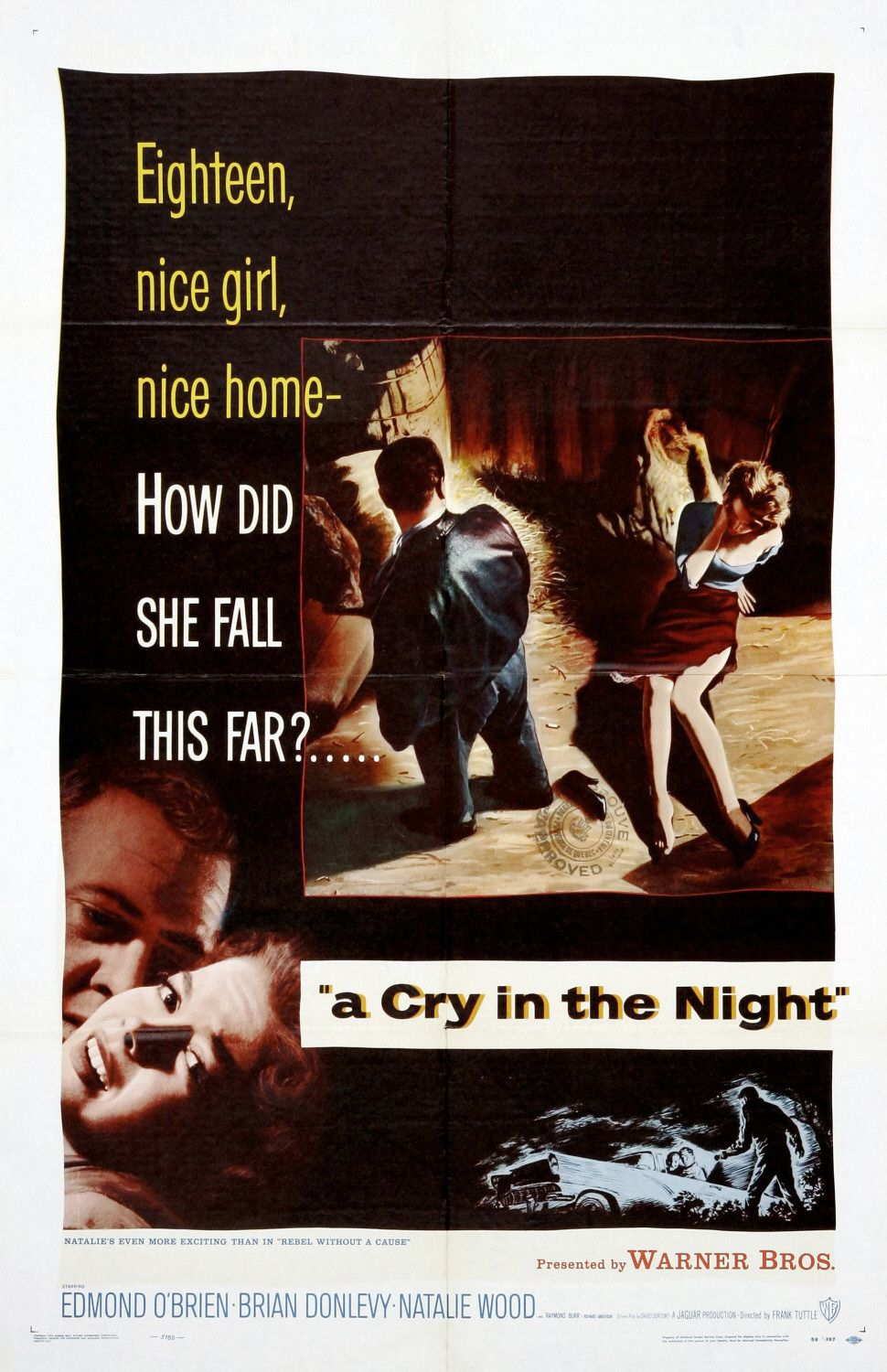 A Cry in the Night (film)