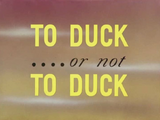 To Duck....or not To Duck