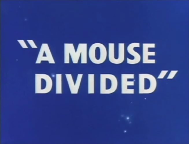 A Mouse Divided