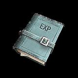 UI Item exp book