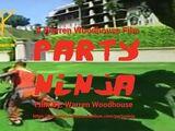 Movies/PartyNinja