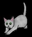 Mistkit (DC).kitten