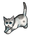 Lindepoel.kitten