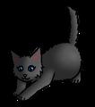 Sintelhart.kitten.alt