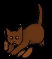Spitspoot (DC).kitten