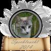 Spechtvacht is 2e geworden bij de Bladvalwedstrijd van 2014