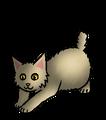 Besneus.kitten.alt