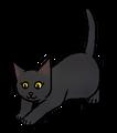 Zwaluwstaart (WC).kitten