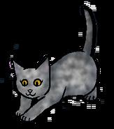 Lavendelkit.kitten