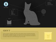 Crowfeather Website