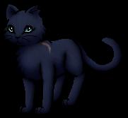 Blaustern.Krieger.KittyVanilla