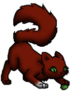 Squirrelkit.byLeo