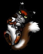 Sol.Kittypet.byCurly