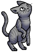 Sagenose.KittypetKit.byCurly