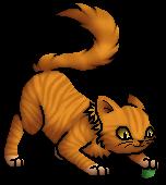 Lionblaze.Kit.byCurly