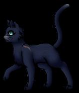 Blaustern.Anführer.KittyVanilla