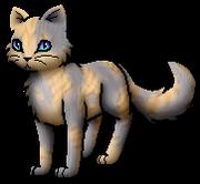 Für Mohnhasel.2.KittyVanilla.png