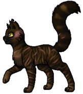 Tigerstar.Leader.alt.byCurly