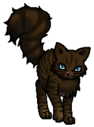 Hawkfrost.Rogue.byCurly