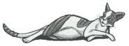 Blattstern.Manga.DWiG.2