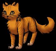 Lionblaze.Warrior.byCurly