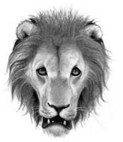 LöwenClan.jpg