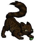 Tigerstar.Kit.byCurly