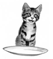 Kittypet.SotC.png