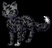Wolfstep.Warrior.byCurly