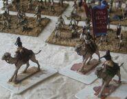 Dervish Camels h