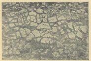 Глиняна плитчаста підлога в житлі № 8 на поселенні в уроч. Коломийщина І (1936 р.).