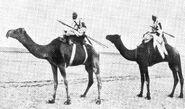 Махдисты на верблюдах