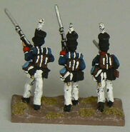 Argentine848 11th Fusilier Back