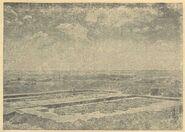Загальний вигляд розкопів на трипільському поселенці в уроч. Коломийщина II (І939 р.).